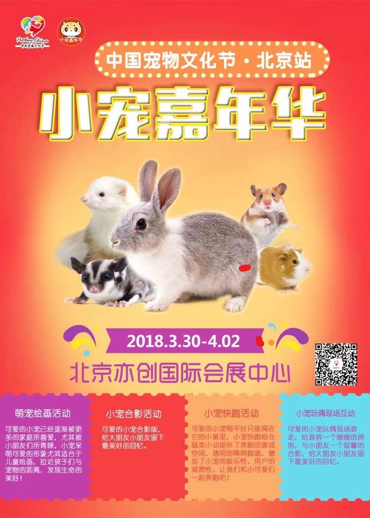 中国宠物文化节-小宠嘉年华