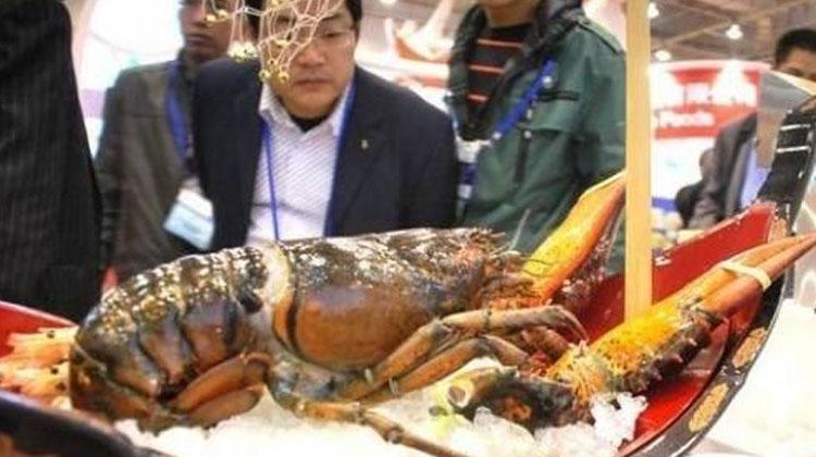渔博会——广州渔博会